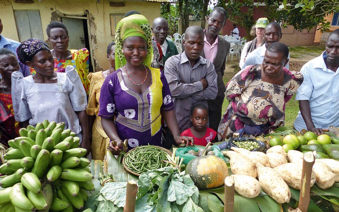 Ansätze der nachhaltigen Entwicklungsarbeit